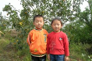 吴维海:西山、瘦驴和老娘